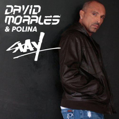 DAVID MORALES f/ POLINA - STAY (RADIO EDIT)