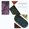 KASKADE and SEAMUS HAJI with Haley - SO FAR AWAY (KASKADE REMIX RADIO) (WITH HALEY)