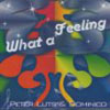 PETER LUTS/DOMINICO - WHAT A FEELING