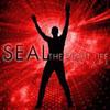 SEAL - THE RIGHT LIFE (EDDIE AMADOR'S USA RADIO EDIT)
