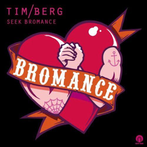 TIM BERG f/ AMANDA WILSON - SEEK BROMANCE (AVICII VOCAL RADIO EDIT)
